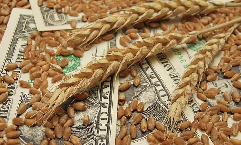 Государственная поддержка развития экспорта сельхозпродукции