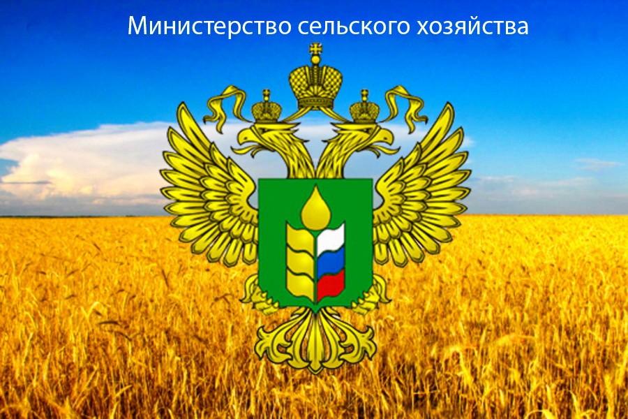Дополнительные меры государственного регулирования АПК.