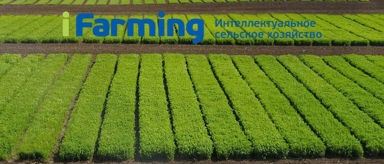Государственное партнерство при создании семеноводческого проекта.