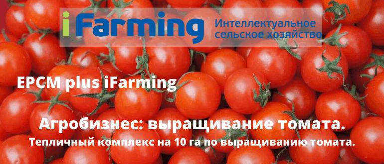 возмещение части прямых понесенных затрат на создание и (или) модернизацию объектов агропромышленного комплекса (КАПЕКС)