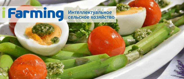 Овощной салат из спаржи