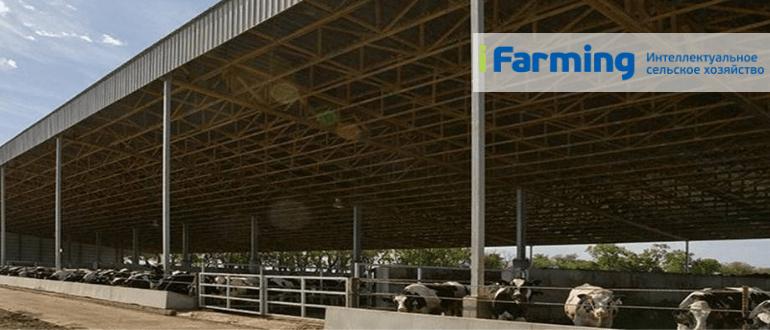 Быстровозводимые молочные фермы