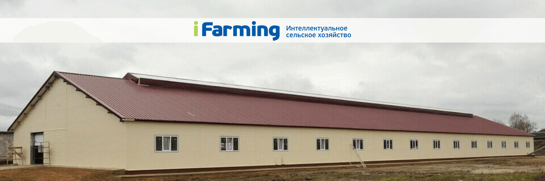 Грант на развитие семейной фермы