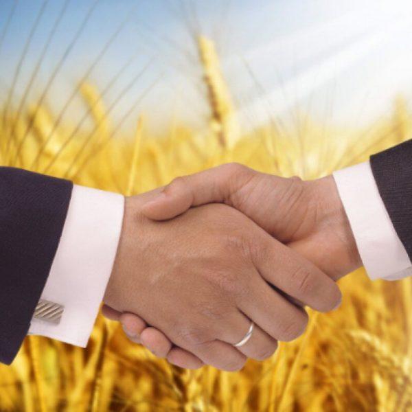 Получите грамонтую консультацию по развитию бизнеса в сельском хозяйстве